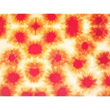 Geschenkpapier - Sonderpreis; 70 x 100 cm, gerollt; Blumenmuster; rot-orange; rot-orange; Offset, glatt; Bögen gerollt