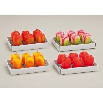 Teelichtkerzen; Tulpen; rot / orange; ca. 4 x 6 cm; 6er Set