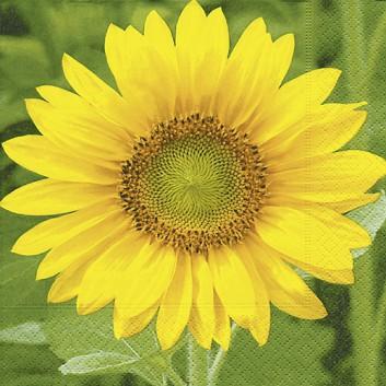 Paper + Design Servietten; 33 x 33 cm; Sunflower: Fotomotiv Sonnenblume; gelb-grün; 200641; 3-lagig; 1/4-Falz (quadratisch); Zelltuch