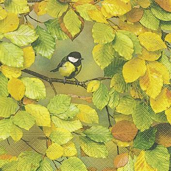Paper + Design Servietten; 33 x 33 cm; Fall is here: Meise im Herbstlaub; gelb-grün-braun; 200732; 3-lagig; 1/4-Falz (quadratisch); Zelltuch