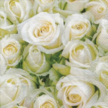Paper + Design Servietten; 33 x 33 cm; White roses; 21454; 3-lagig; 1/4-Falz (quadratisch); Zelltuch