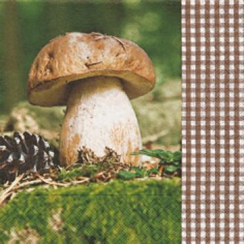 Paper + Design Servietten; 33 x 33 cm; Let' go mushrooming (Steinpilz); grün-braun; 21487; 3-lagig; 1/4-Falz (quadratisch); Zelltuch