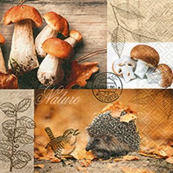 Paper + Design Servietten; 33 x 33 cm; On the forest floor; bunt; 22005; 3-lagig; 1/4-Falz (quadratisch); Zelltuch