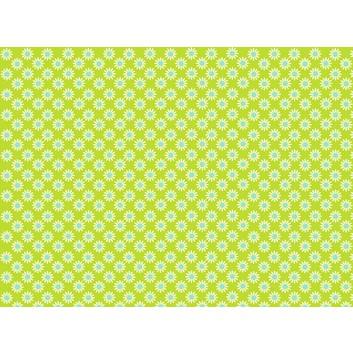 Braun & Company Geschenkpapier, lux; 70 cm x 2 m; Rosina (Blümchen); hellgrün; 14426; Offsetpapier, glatt; Röllchen auf Papphülse (34 mm Ø)