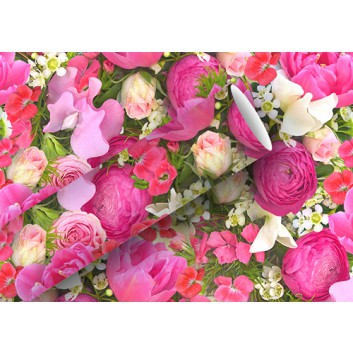 Braun & Company Geschenkpapier, lux; 70 cm x 2 m; Fotomotiv: Blumen; rosa-pink mit grün; 16439; Offsetpapier, glatt