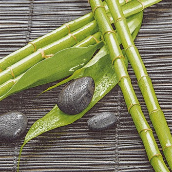 HomeFashion Servietten; 33 x 33 cm; Bamboo Wellness; grün-grau; 2114001; 3-lagig; 1/4 Falz (quadratisch); Zelltuch
