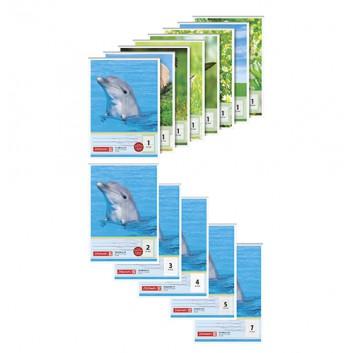 Brunnen Schulblock: Schreibblock; DIN A5; verschiedene Lineaturen; 80 g/m² chlorfrei gebleicht; 50 Blatt; kopfgeleimt (oben geleimt)