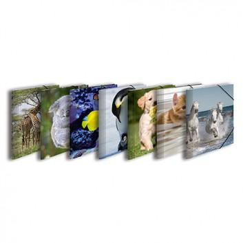 HERMA Eckspanner-Sammelmappe GLOSSY Tiere; verschiedene Motive; für DIN A4; aus stabilem Polypropylen; ca. 200 Blatt