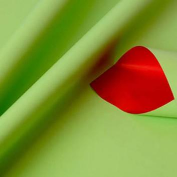 Geschenkpapier; 50 cm x 250 m; bicolor, zweiseitig farbig; hgrün-rot; 80156; Geschenkpapier, glatt; Secare-Rolle