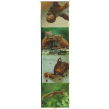 SWS Geschenkband; 25 mm x 25 m; Eichhörnchen; grün-braun; 28936; Taftband; ohne Draht