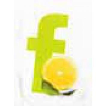 Duni Erfrischungstuch, Lemon einzel verpackt; mit Druck; 70 x 50 mm